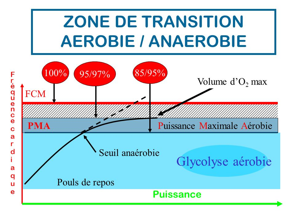 ZONE DE TRANSITION AEROBIE / ANAEROBIE