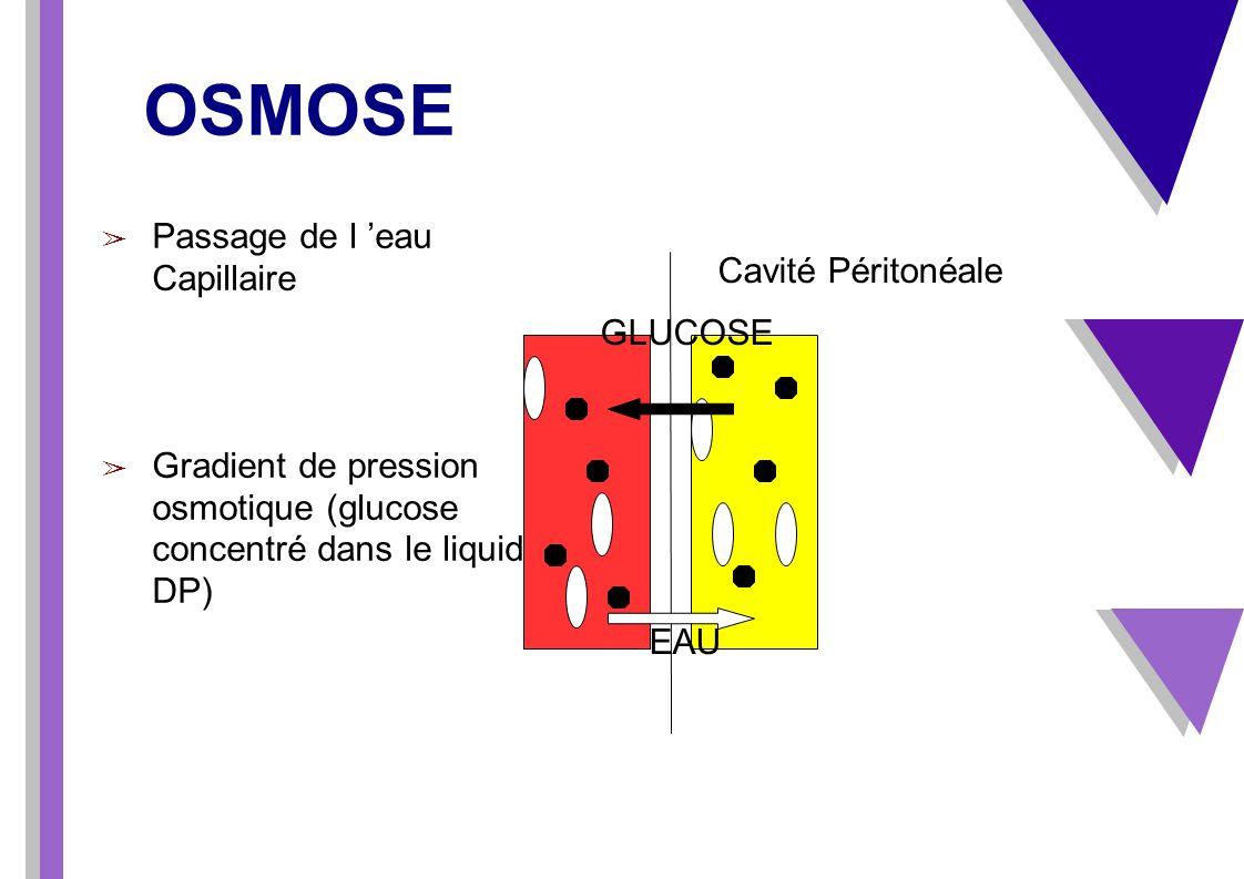 OSMOSE Passage de l 'eau Capillaire Cavité Péritonéale GLUCOSE
