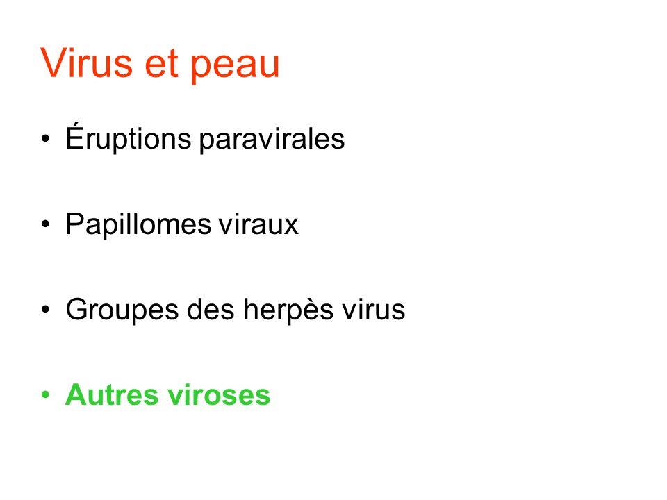 Virus et peau Éruptions paravirales Papillomes viraux