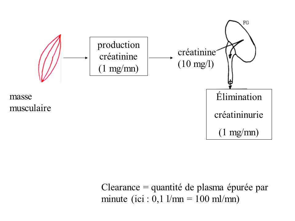 production créatinine (1 mg/mn)