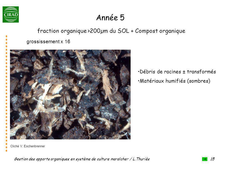 Année 5 fraction organique >200µm du SOL + Compost organique