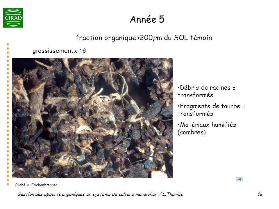 fraction organique >200µm du SOL témoin