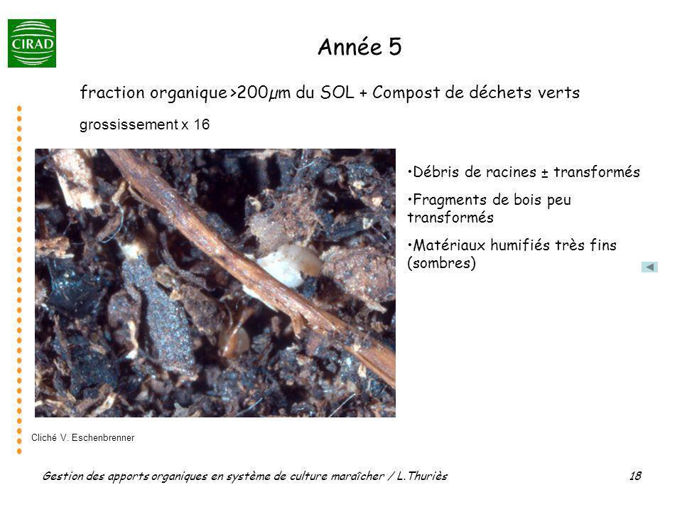 Année 5 fraction organique >200µm du SOL + Compost de déchets verts
