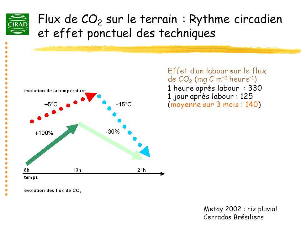 Flux de CO2 sur le terrain : Rythme circadien et effet ponctuel des techniques