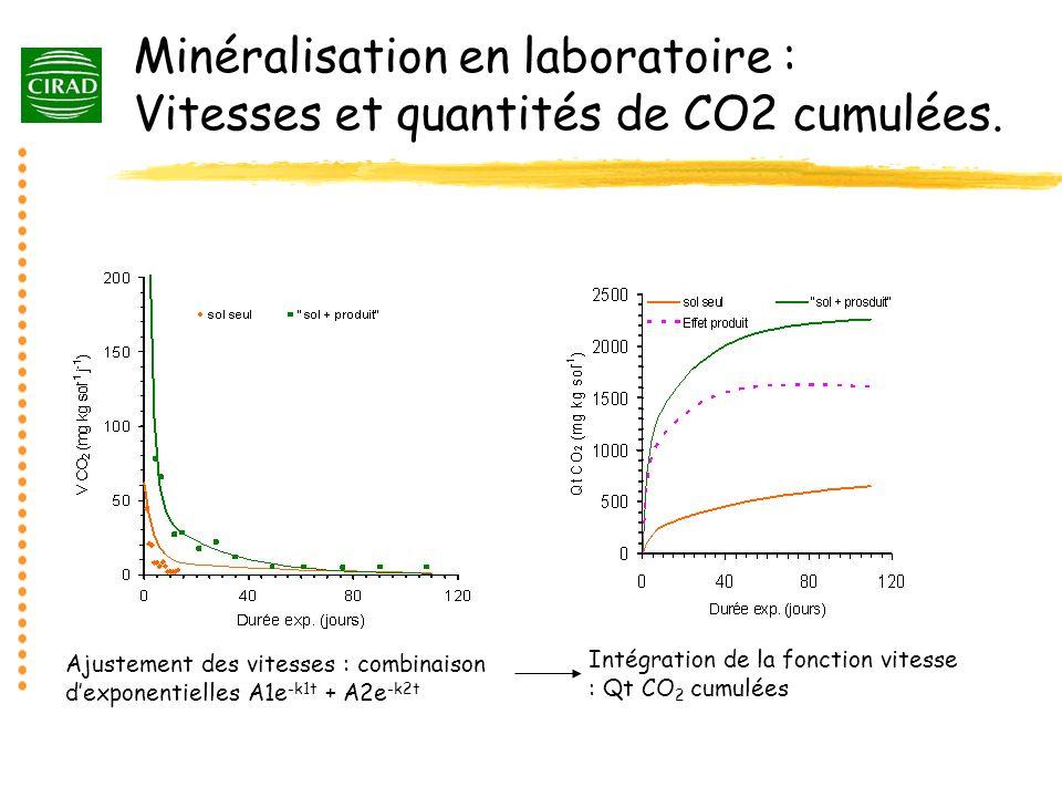 Minéralisation en laboratoire : Vitesses et quantités de CO2 cumulées.