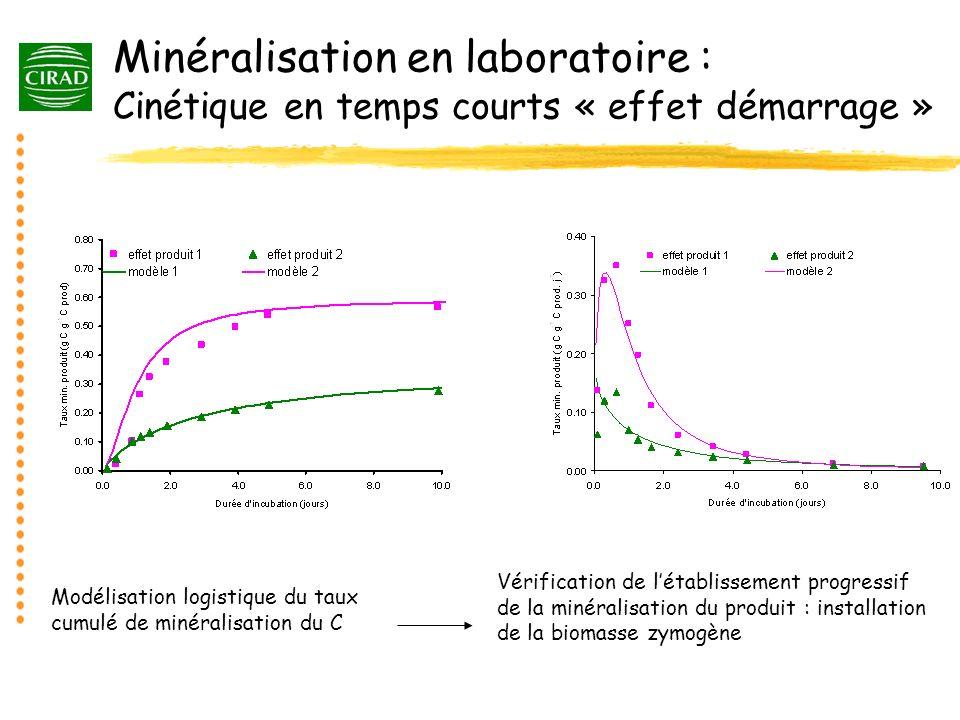 Minéralisation en laboratoire : Cinétique en temps courts « effet démarrage »