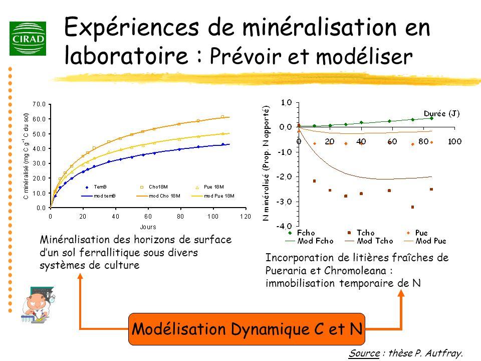 Expériences de minéralisation en laboratoire : Prévoir et modéliser