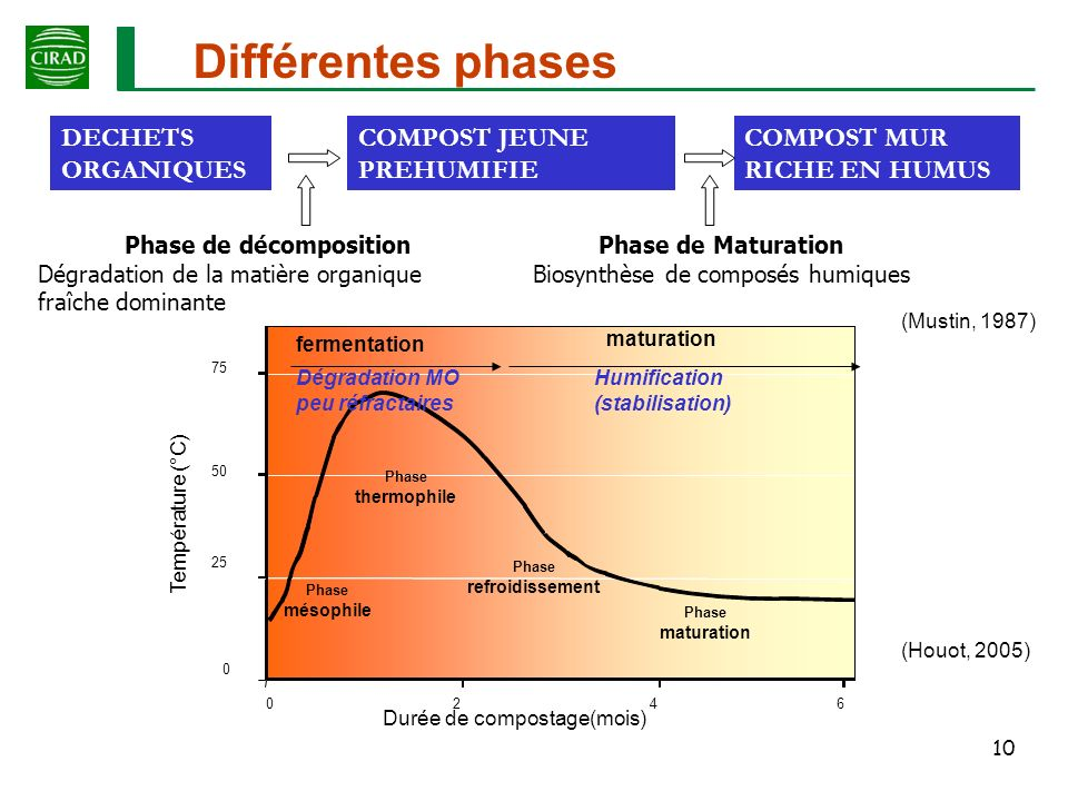 Phase de décomposition