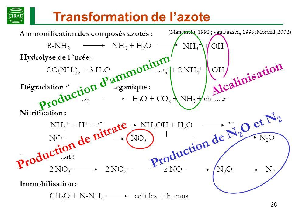 Transformation de l'azote