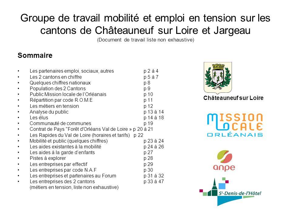 Groupe de travail mobilité et emploi en tension sur les cantons de Châteauneuf sur Loire et Jargeau (Document de travail liste non exhaustive)