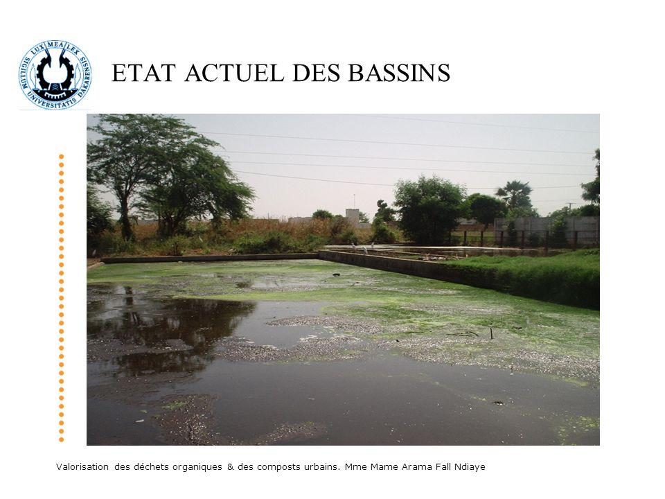 ETAT ACTUEL DES BASSINS