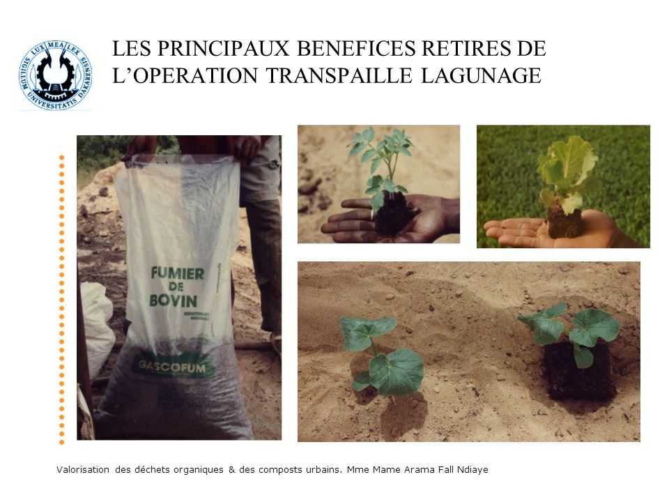 LES PRINCIPAUX BENEFICES RETIRES DE L'OPERATION TRANSPAILLE LAGUNAGE