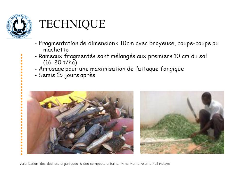 TECHNIQUE - Fragmentation de dimension < 10cm avec broyeuse, coupe-coupe ou machette.