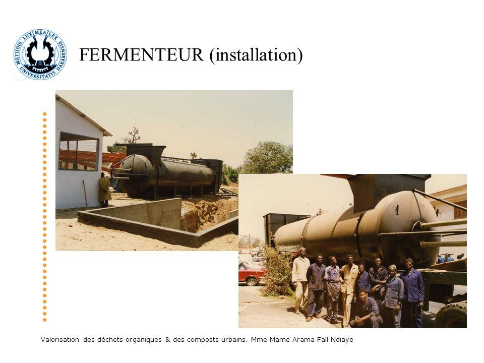 FERMENTEUR (installation)