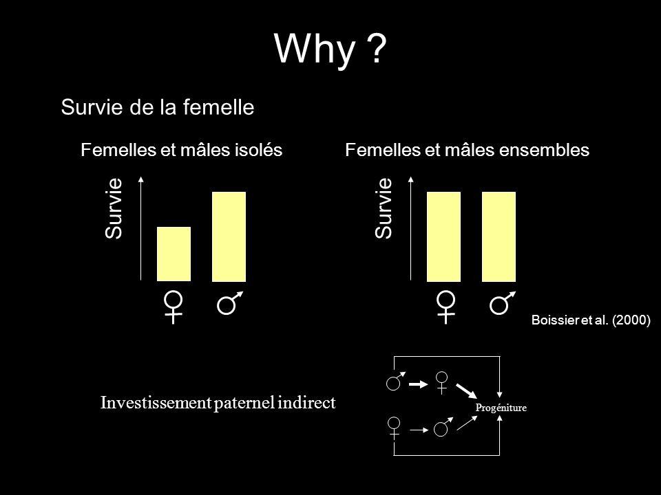 Why Survie de la femelle Survie Survie Femelles et mâles isolés