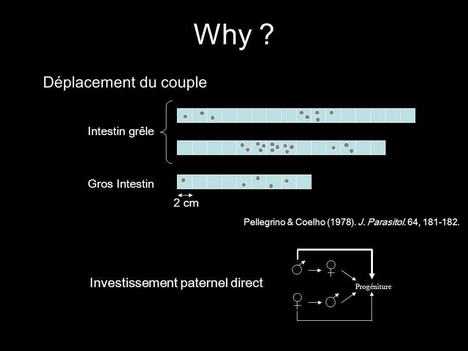 Why Déplacement du couple Investissement paternel direct
