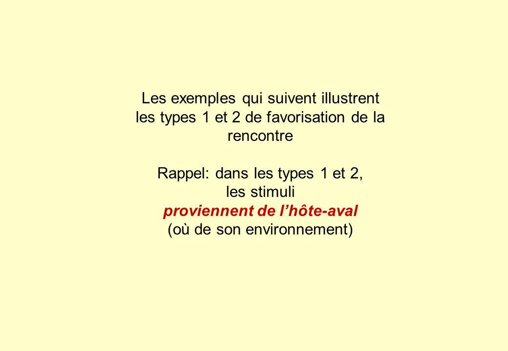 Rappel: dans les types 1 et 2, les stimuli proviennent de l'hôte-aval