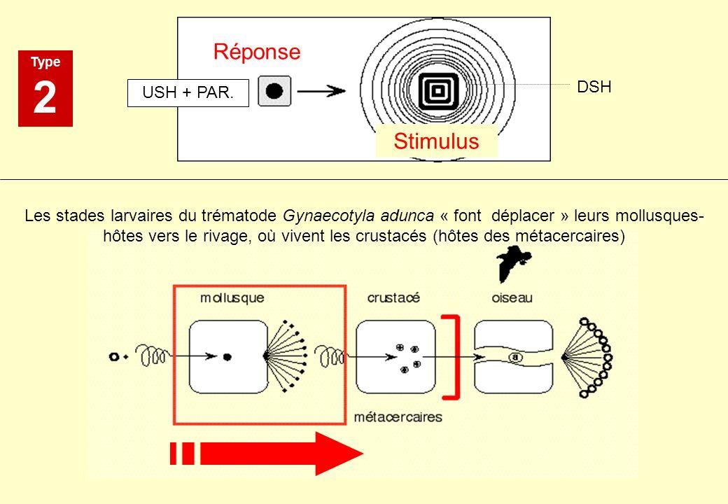 2 Réponse Stimulus DSH USH + PAR.
