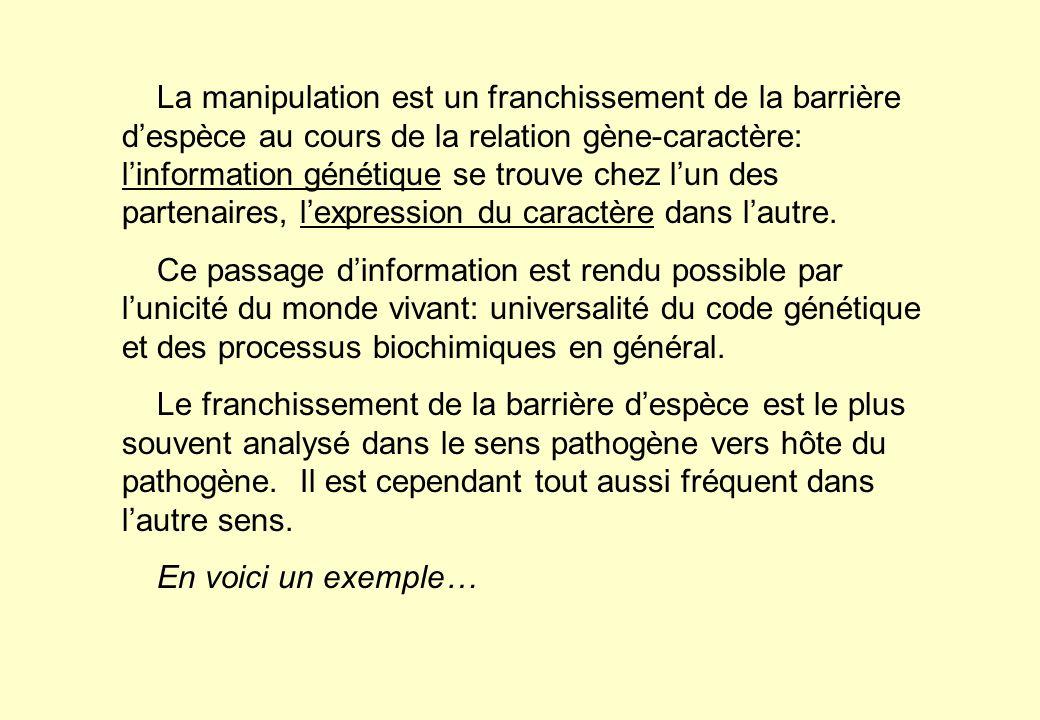La manipulation est un franchissement de la barrière d'espèce au cours de la relation gène-caractère: l'information génétique se trouve chez l'un des partenaires, l'expression du caractère dans l'autre.