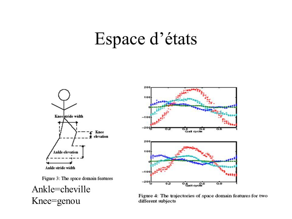 Espace d'états Ankle=cheville Knee=genou