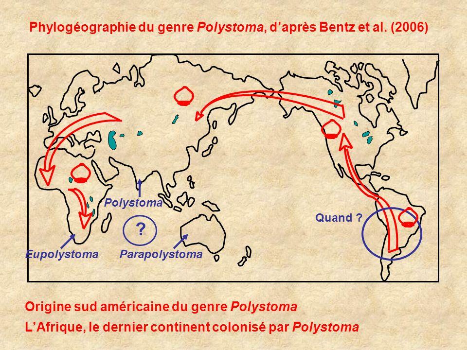 Phylogéographie du genre Polystoma, d'après Bentz et al. (2006)
