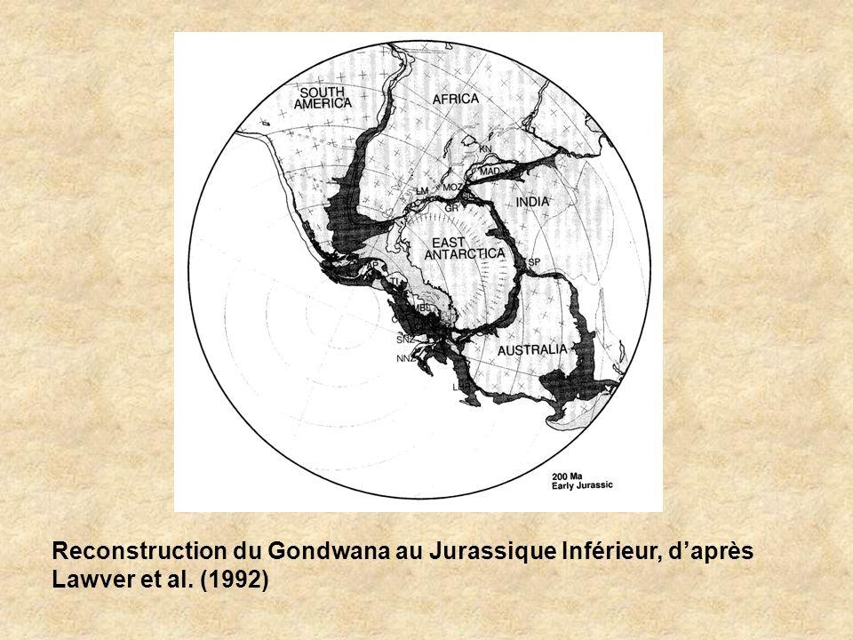 Reconstruction du Gondwana au Jurassique Inférieur, d'après