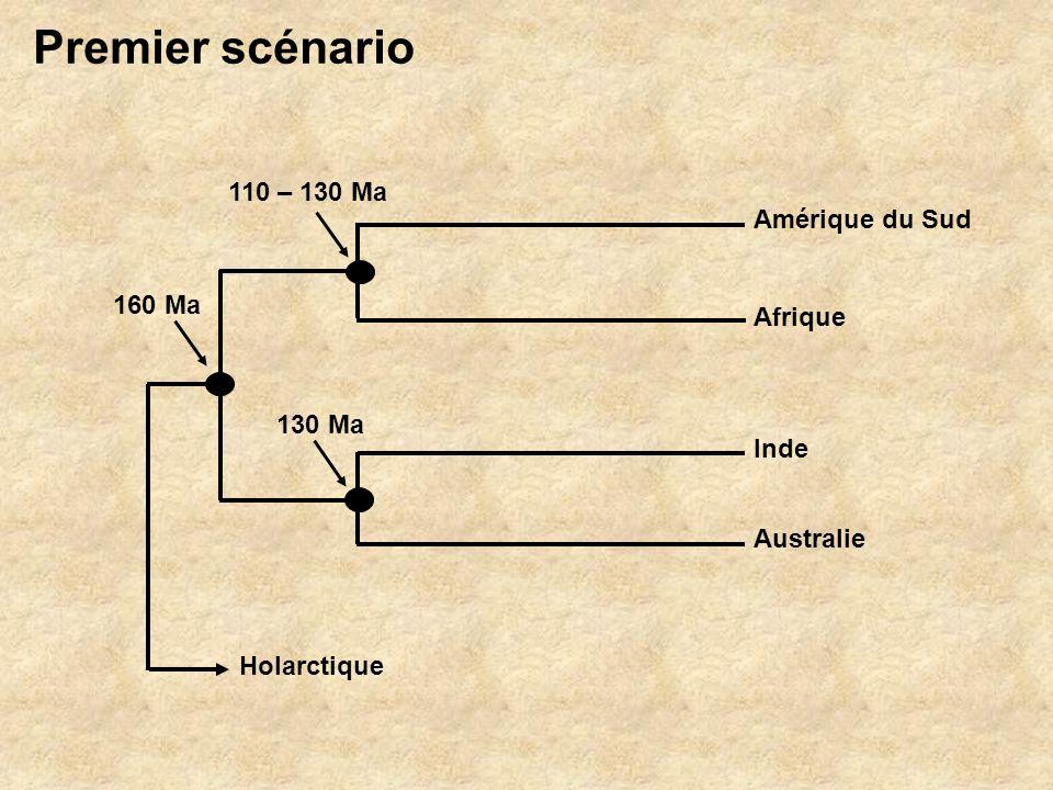 Premier scénario 110 – 130 Ma Amérique du Sud 160 Ma Afrique 130 Ma