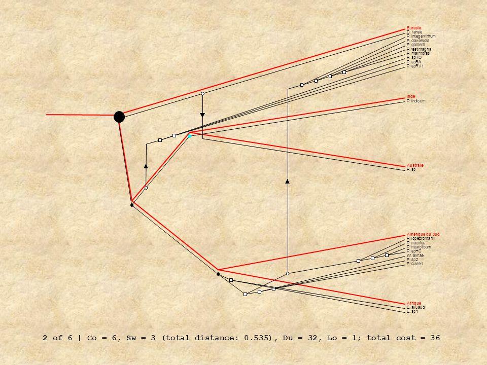 EurasieD. ranae. P. integerrimum. P. dawiekoki. P. gallienii. P. testimagna. P. marmorati. P. spRO.