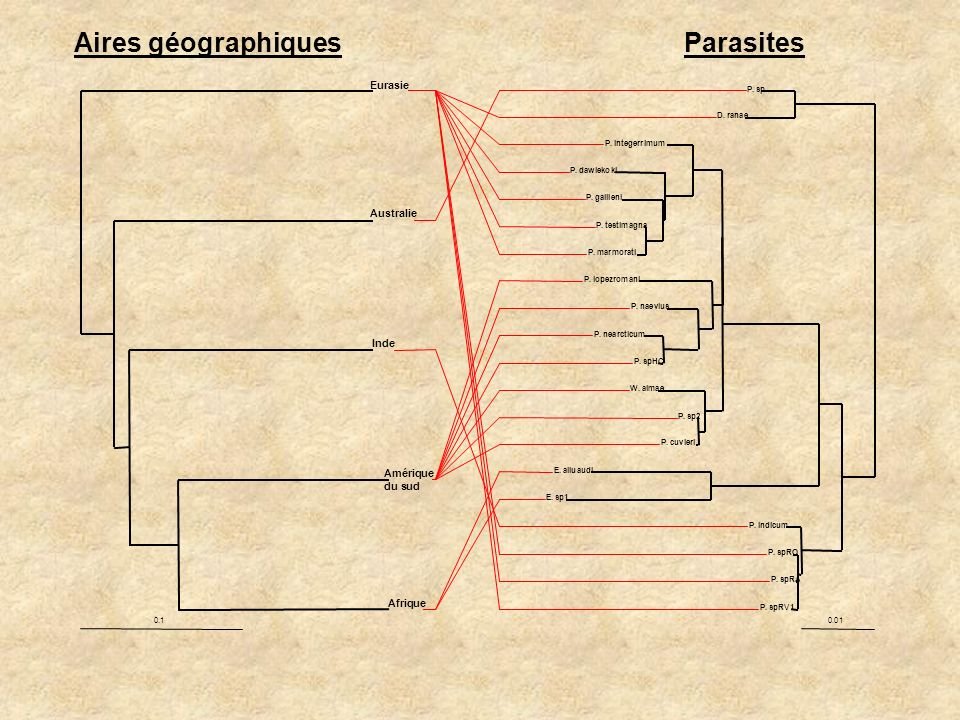Aires géographiques Parasites