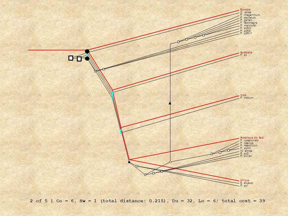 EurasieD. ranae. P. integerrimum. P. dawiekoki. P. gallieni. P. testimagna. P. marmorati. P. spRO. P. spRA.