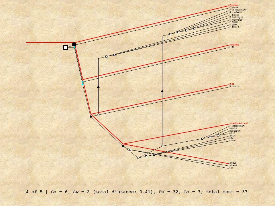 Eurasie D. ranae. P. integerrimum. P. dawiekoki. P. gallieni. P. testimagna. P. marmorati. P. spRO.