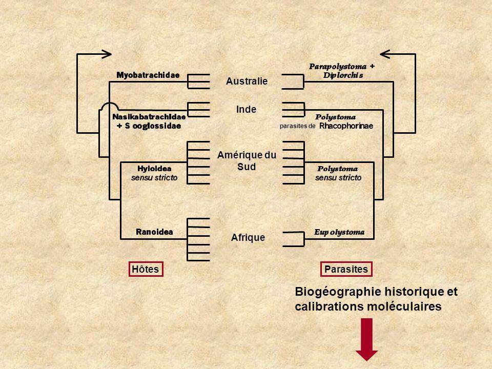 Biogéographie historique et calibrations moléculaires