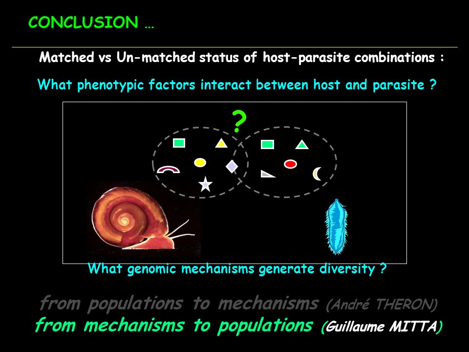 from populations to mechanisms (André THERON)
