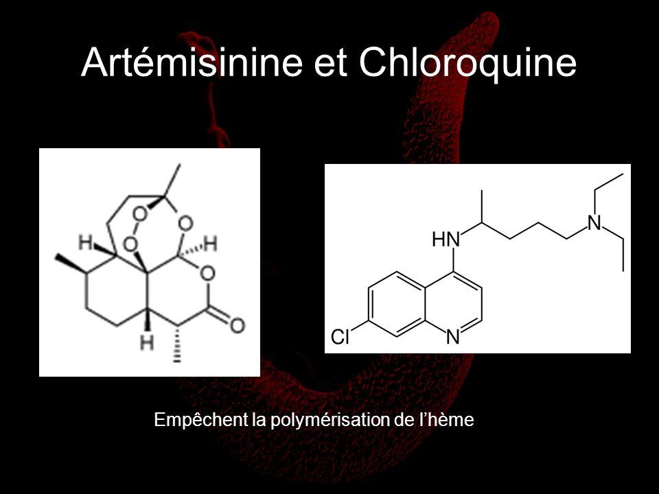 Artémisinine et Chloroquine
