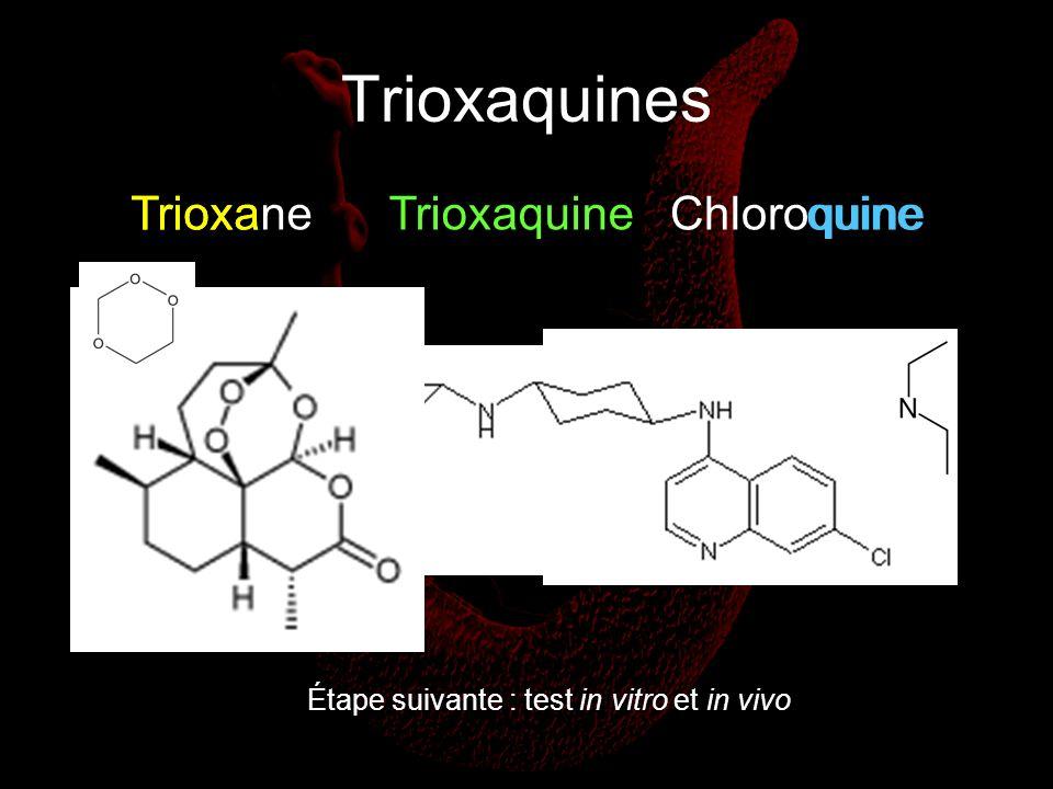 Trioxaquines Trioxa Trioxane Trioxaquine Chloroquine quine
