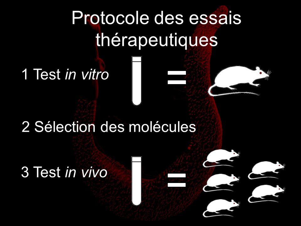 Protocole des essais thérapeutiques
