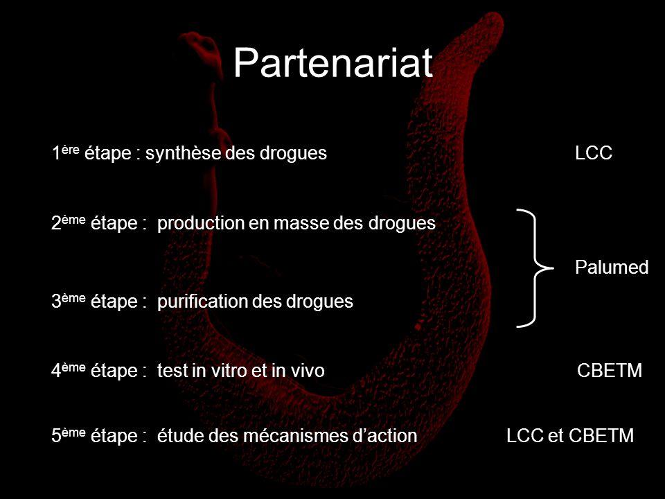 Partenariat 1ère étape : synthèse des drogues LCC