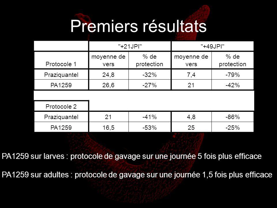 Premiers résultats +21JPI +49JPI Protocole 1. moyenne de vers. % de protection. Praziquantel.