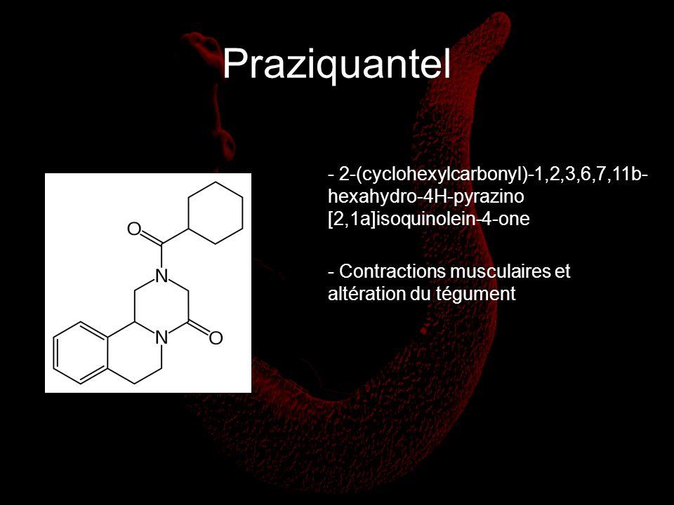 Praziquantel 2-(cyclohexylcarbonyl)-1,2,3,6,7,11b-
