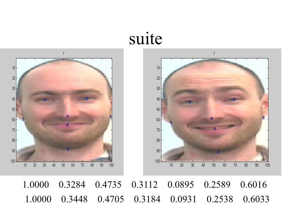 suite 1.0000 0.3284 0.4735 0.3112 0.0895 0.2589 0.6016.