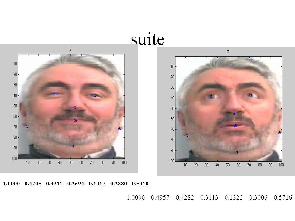 suite 1.0000 0.4705 0.4311 0.2594 0.1417 0.2880 0.5410.