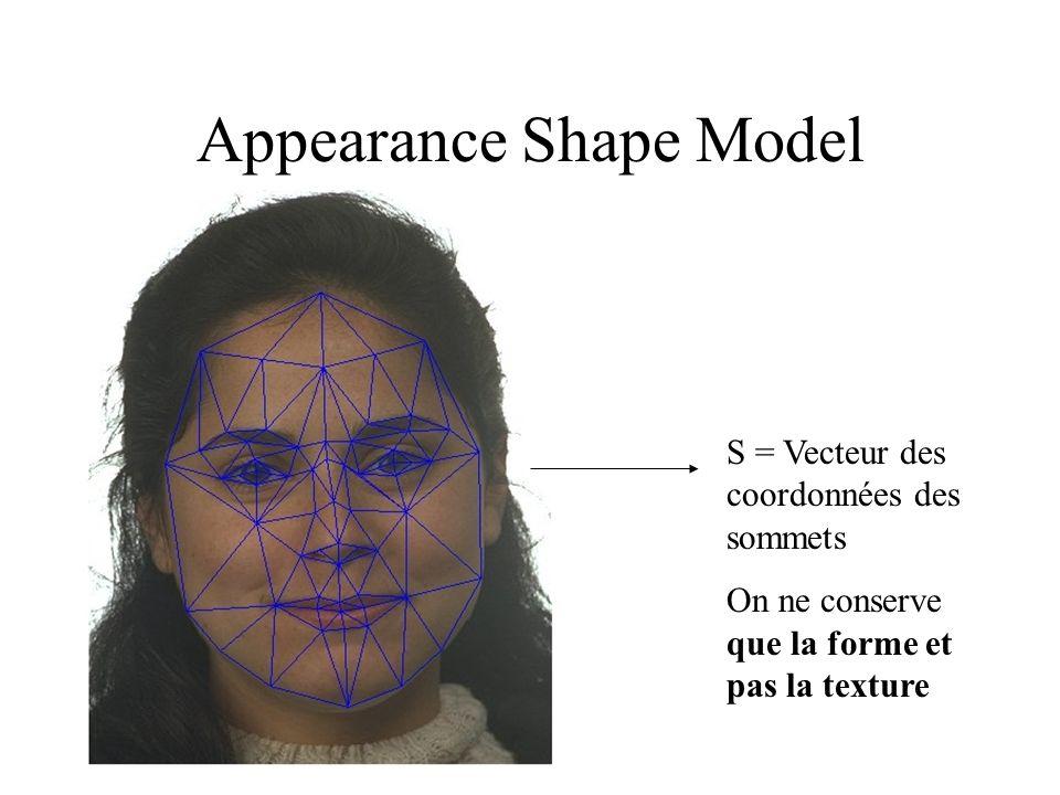 Appearance Shape Model