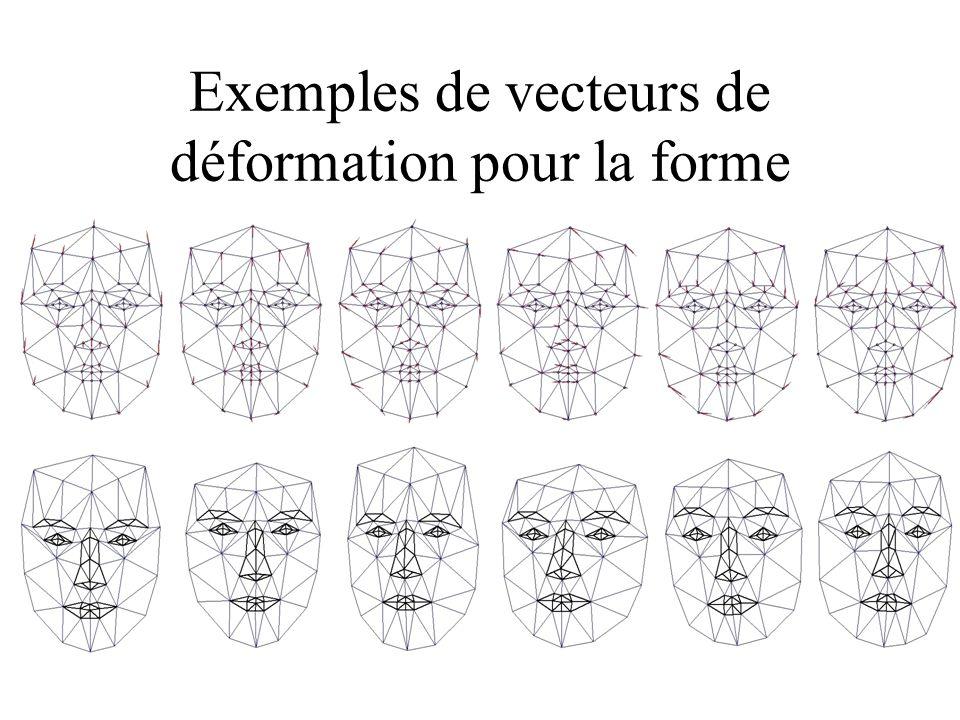 Exemples de vecteurs de déformation pour la forme