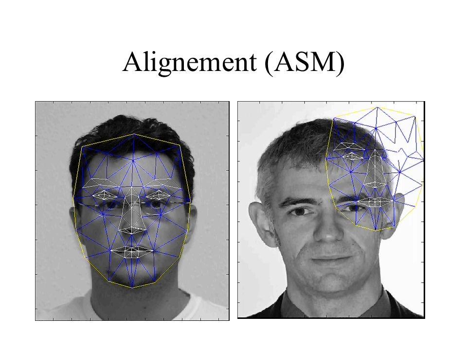Alignement (ASM)