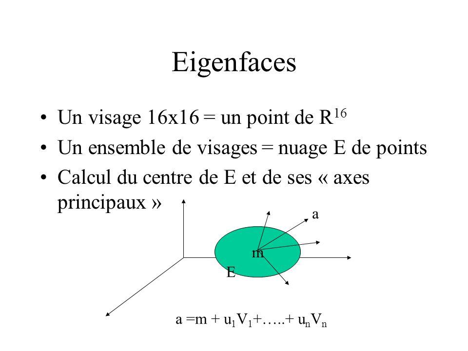 Eigenfaces Un visage 16x16 = un point de R16