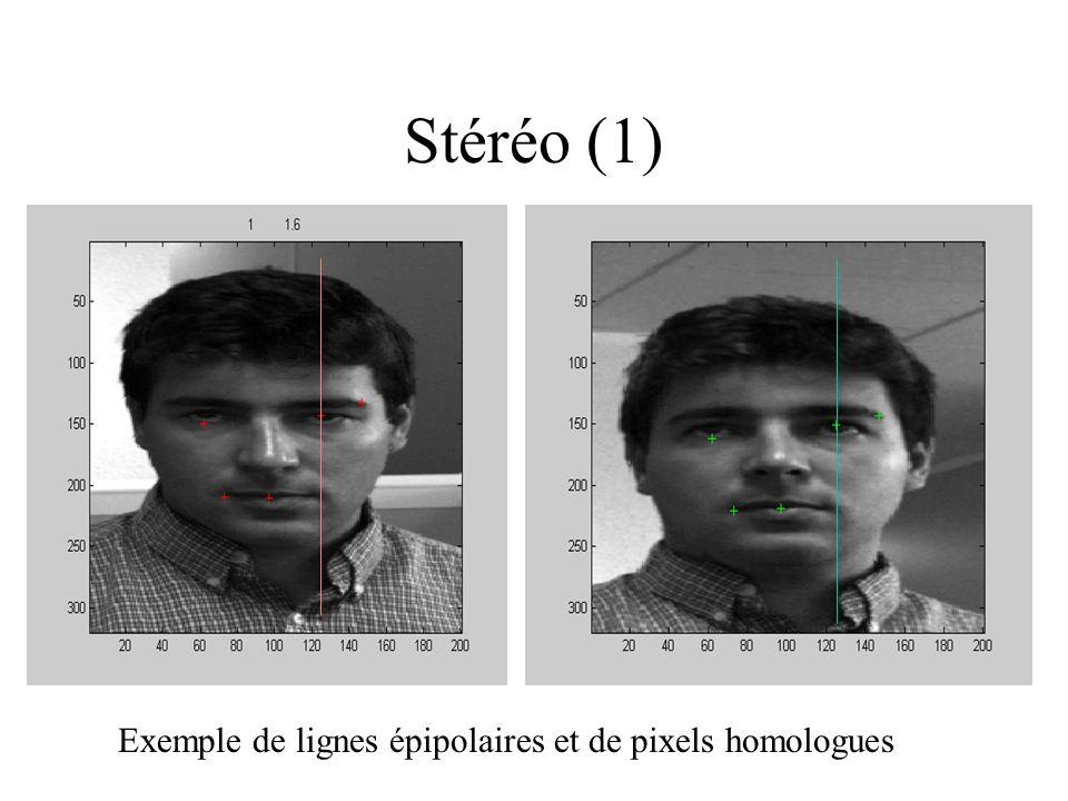 Stéréo (1) Exemple de lignes épipolaires et de pixels homologues