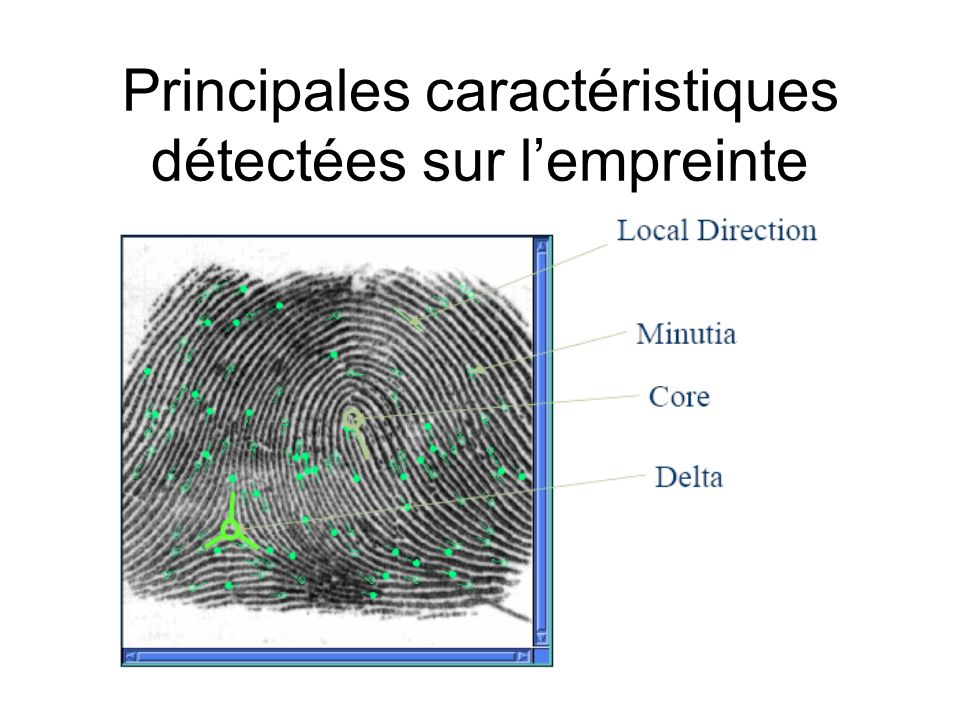 Principales caractéristiques détectées sur l'empreinte