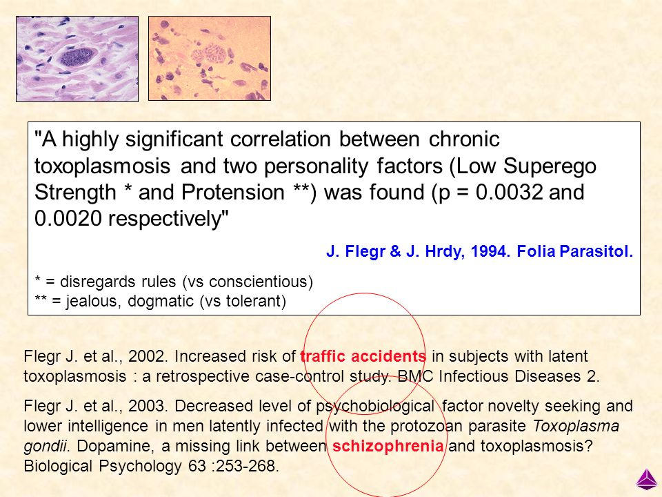 A highly significant correlation between chronic toxoplasmosis and two personality factors (Low Superego Strength * and Protension **) was found (p = 0.0032 and 0.0020 respectively