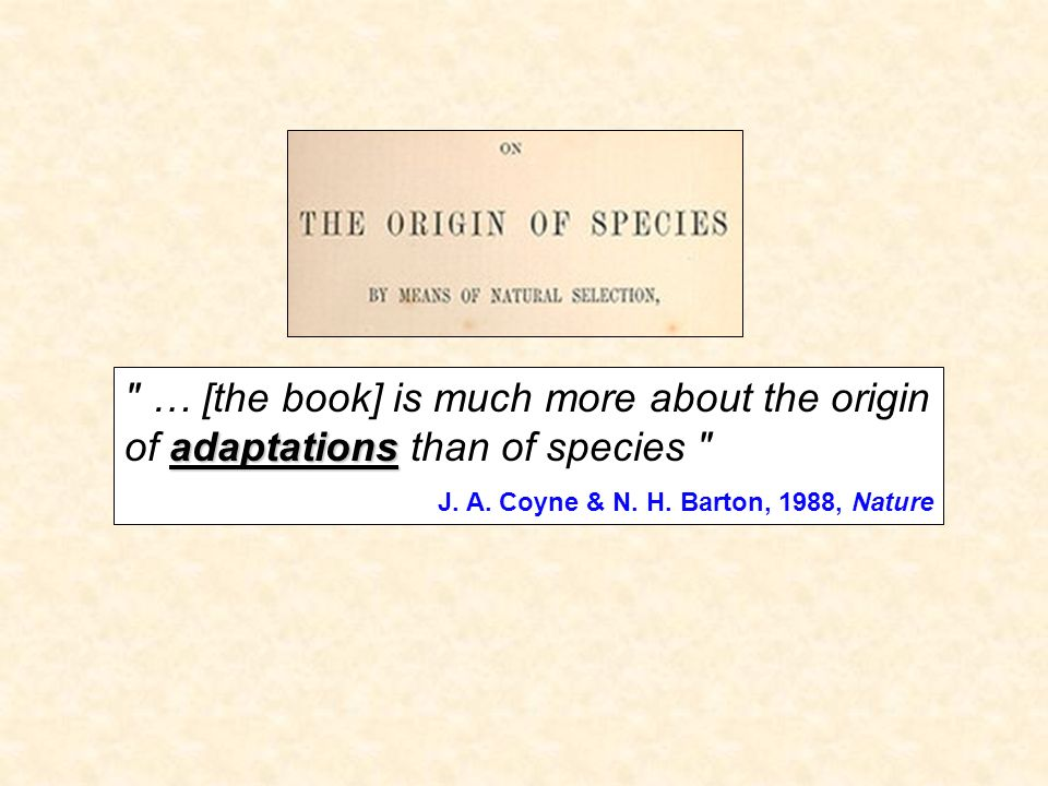 … [the book] is much more about the origin of adaptations than of species
