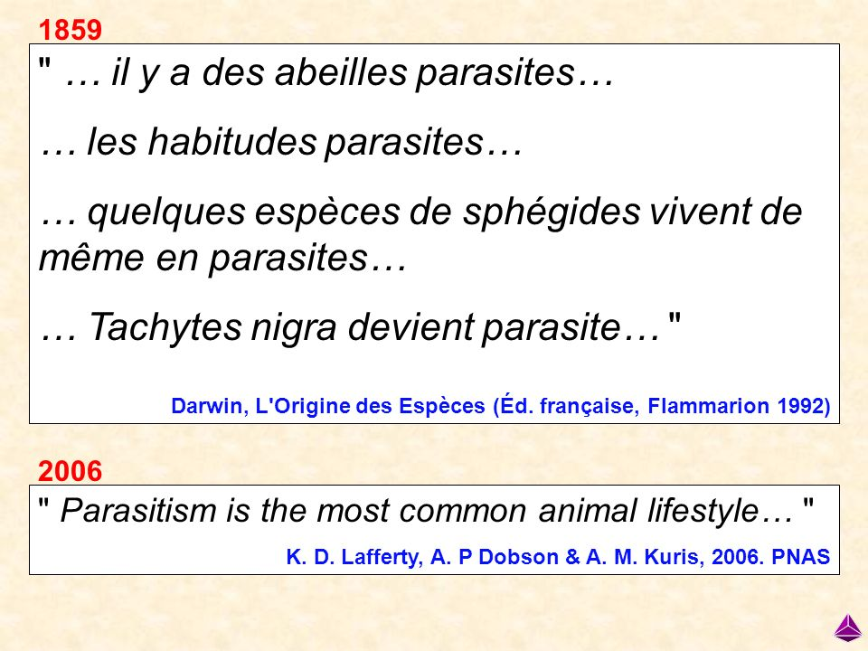 … il y a des abeilles parasites… … les habitudes parasites…